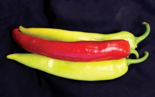 Blazing Banana F1
