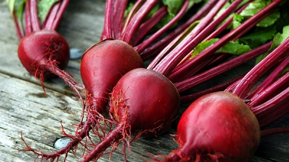 beets-category.jpg