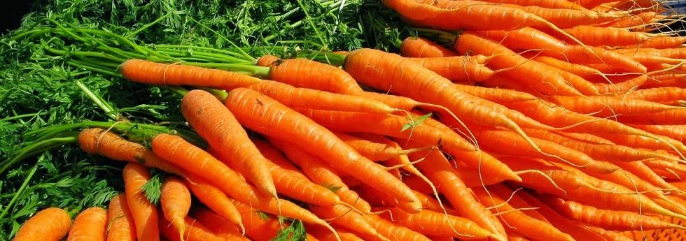 carrot-category.jpg