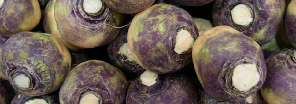 rutabaga-category.jpg