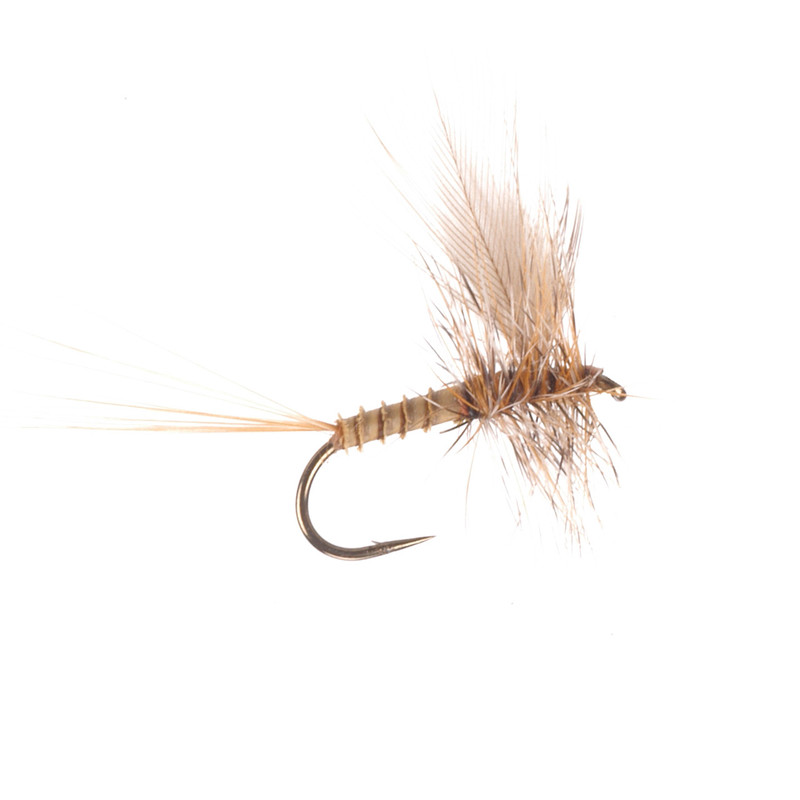 AK's Eastern March Brown Dry Fly Size #14