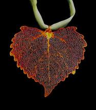 Cottonwood Leaf Ornament
