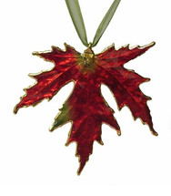 Silver Maple - Deep Red