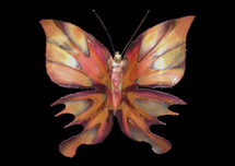 Copper Butterfly Wall Hanging