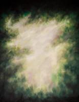 http://d3d71ba2asa5oz.cloudfront.net/52000774/images/a0128__1.jpg