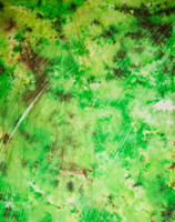 http://d3d71ba2asa5oz.cloudfront.net/52000774/images/a5178__1.jpg