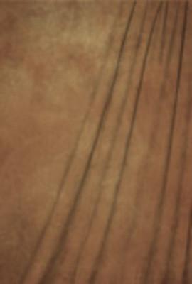 http://d3d71ba2asa5oz.cloudfront.net/52000774/images/sh-sv-62037-1020__1.jpg