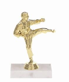 Martial Arts (Male)