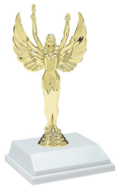 6 Inch Special Trophy
