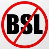Speak Out Against BSL