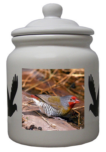Finch Ceramic Color Cookie Jar