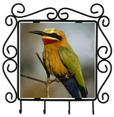 Bee Eater Metal Key Holder