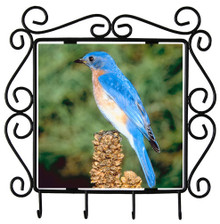 Bluebird Metal Key Holder