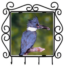 Belted Kingfisher Metal Key Holder