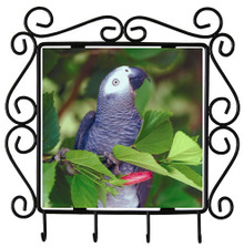 African Grey Parrot Metal Key Holder