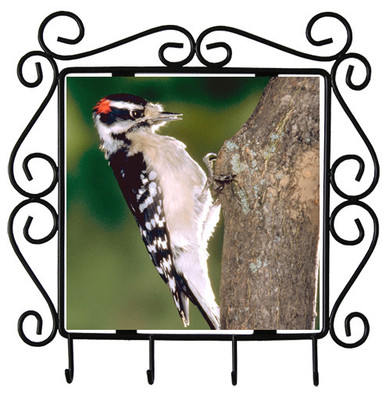 Downey Woodpecker Metal Key Holder