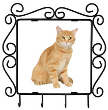 Tabby Cat Metal Key Holder
