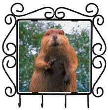 Beaver Metal Key Holder