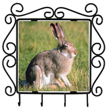 Rabbit Metal Key Holder
