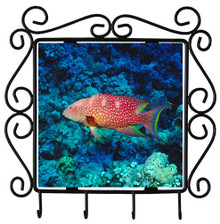 Grouper Metal Key Holder