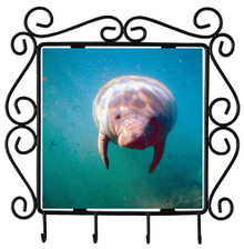 Manatee Metal Key Holder