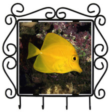 Yellow Tang Metal Key Holder
