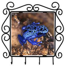Blue Frog Metal Key Holder
