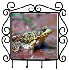Green Frog Metal Key Holder
