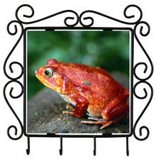 Tomato Frog Metal Key Holder