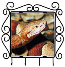 Copperhead Snake Metal Key Holder