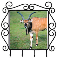 Eland Metal Key Holder