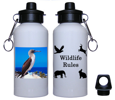 Blue Footed Booby Aluminum Water Bottle