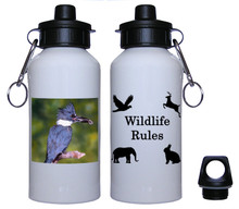 Belted Kingfisher Aluminum Water Bottle