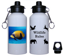 Blue Girdled Angelfish Aluminum Water Bottle