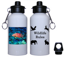 Grouper Aluminum Water Bottle