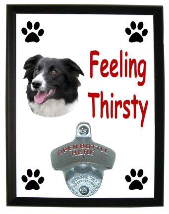 Border Collie Feeling Thirsty Bottle Opener Plaque