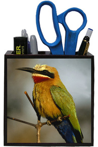 Bee Eater Wooden Pencil Holder
