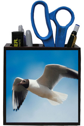 Black Headed Gull Wooden Pencil Holder