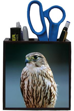 Falcon Wooden Pencil Holder