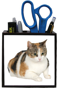 Calico Cat Wooden Pencil Holder