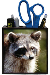 Raccoon Wooden Pencil Holder