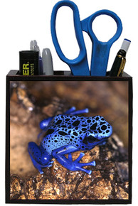 Blue Frog Wooden Pencil Holder