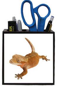Gecko Wooden Pencil Holder