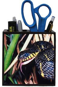 Mangrove Snake Wooden Pencil Holder