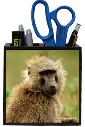 Baboon Wooden Pencil Holder
