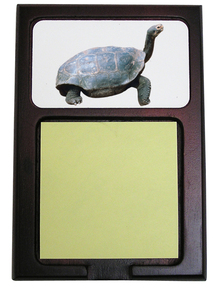 Turtle Wooden Sticky Note Holder