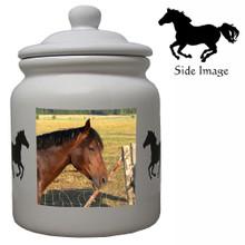 Horse Ceramic Color Cookie Jar