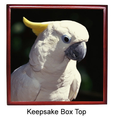 Cockatoo Keepsake Box