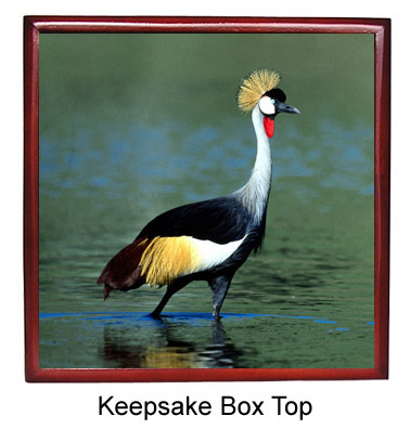 Crowned Crane Keepsake Box
