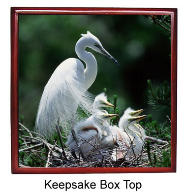 Egret Keepsake Box